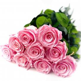9 Bladoróżowych Wiecznych Róż na Łodydze 50 cm