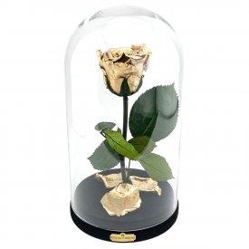 Złota Wieczna Róża Beauty & The Beast