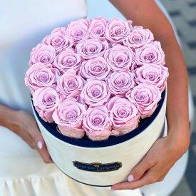Bladoróżowe Wieczne Róże w Coco Dużym Flokowanym Boxie