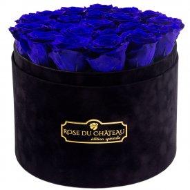 Niebieskie Wieczne Róże w Czarnym Dużym Flokowanym Boxie