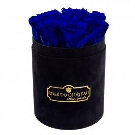 Niebieskie Wieczne Róże w Czarnym Małym Flokowanym Boxie