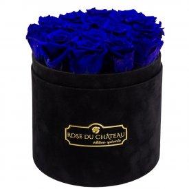 Niebieskie Wieczne Róże w Czarnym Flokowanym Boxie