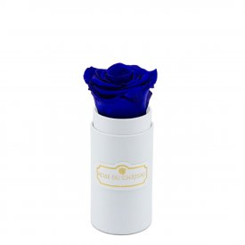 Niebieska Wieczna Róża w Białym Mini Boxie
