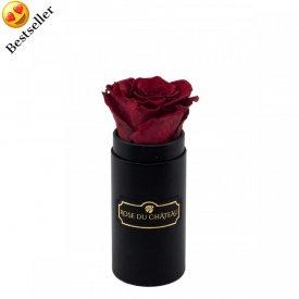 Czerwona Wieczna Róża w Czarnym Mini Boxie
