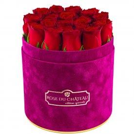 Édition Spéciale Fuksjowy Flokowany Box z Czerwonymi Różami Żywymi