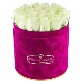 Édition Spéciale Fuksjowy Flokowany Box z Białymi Różami Żywymi