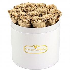 Złote Wieczne Róże w Białym Okrągłym Boxie