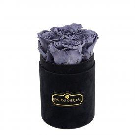 Szare Wieczne Róże w Czarnym Flokowanym Baby Boxie