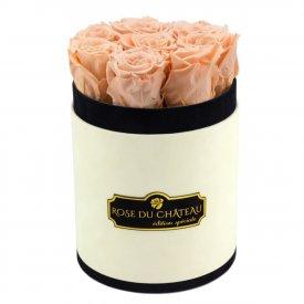 Herbaciane Wieczne Róże w Coco Małym Flokowanym Boxie