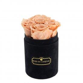 Herbaciane Wieczne Róże w Czarnym Flokowanym Baby Boxie