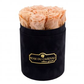 Herbaciane Wieczne Róże w Czarnym Małym Flokowanym Boxie