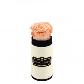 Herbaciana Wieczna Róża w Coco Mini Flokowanym Boxie