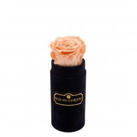 Herbaciana Wieczna Róża w Czarnym Mini Flokowanym Boxie
