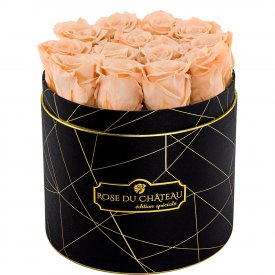 Herbaciane Wieczne Róże w Czarnym Industrialnym Boxie