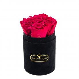 Różowe Wieczne Róże w Czarnym Flokowanym Baby Boxie
