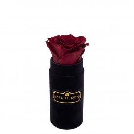 Czerwona Wieczna Róża w Czarnym Mini Flokowanym Boxie