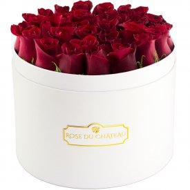 Czerwone Róże Żywe w Białym Dużym Boxie