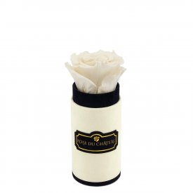 Biała Wieczna Róża w Coco Mini Flokowanym Boxie