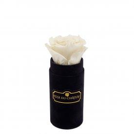 Biała Wieczna Róża w Czarnym Mini Flokowanym Boxie