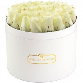 Białe Róże Żywe w Białym Dużym Boxie