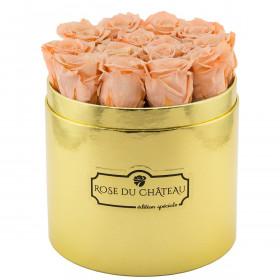 Herbaciane Wieczne Róże w Złotym Boxie