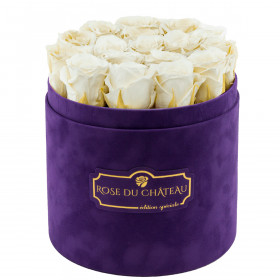 Białe Wieczne Róże w Fioletowym Flokowanym Boxie