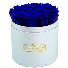 Niebieskie Wieczne Róże w Błękitnym Boxie