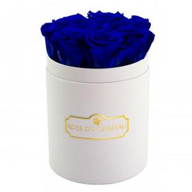 Niebieskie Wieczne Róże w Białym Małym Boxie