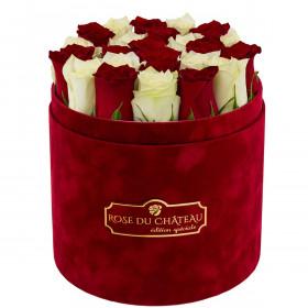 Édition Spéciale Bordowy Flokowany Box z Białymi & Czerwonymi Różami Żywymi