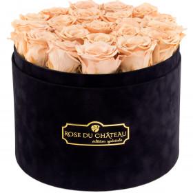 Herbaciane Wieczne Róże w Czarnym Dużym Flokowanym Boxie