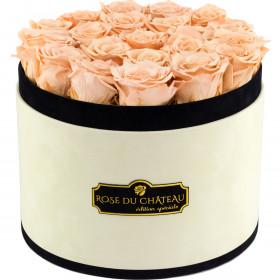 Herbaciane Wieczne Róże w Coco Dużym Flokowanym Boxie