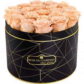Herbaciane Wieczne Róże w Czarnym Dużym Industrialnym Boxie