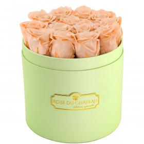 Herbaciane Wieczne Róże w Miętowym Boxie