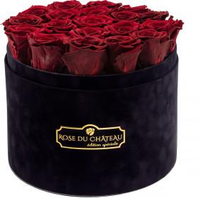 Czerwone Wieczne Róże w Czarnym Dużym Flokowanym Boxie