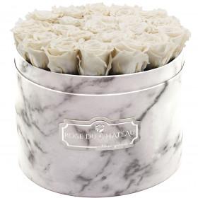 Białe Wieczne Róże w Białym Dużym Marmurowym Boxie