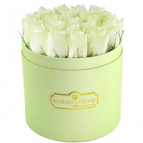 Édition Spéciale Miętowy Box z Białymi Różami Żywymi