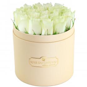 Édition Spéciale Brzoskwiniowy Box z Białymi Różami Żywymi
