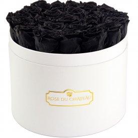 Rose eterne nere in flowerbox bianco grande