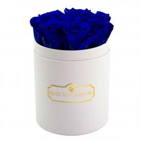 Rose eterne blu in flowerbox bianco piccolo