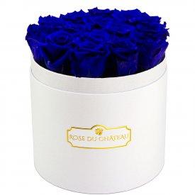 Rose eterne blu in flowerbox tondo bianco