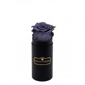 Rose eterna grigia in flowerbox nero mini