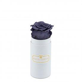 Rosa eterna grigia in flowerbox bianco mini