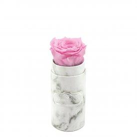Rosa eterna rosa pallido in flowerbox marmo bianco mini