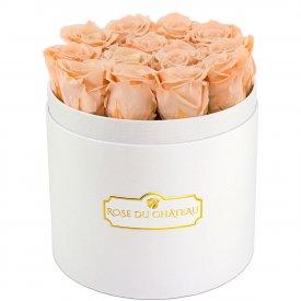 Rose eterne crema in flowerbox tondo bianco
