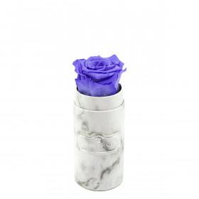 Rosa eterna lavanda in flowerbox marmo bianco mini