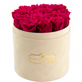 Rose eterne rosa in flowerbox floccato beige