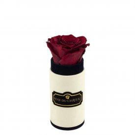 Rote Ewige Rose in Coco Beflockter Mini Rosenbox