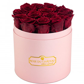Rote Ewige Rosen in rosafarbener Rosenbox