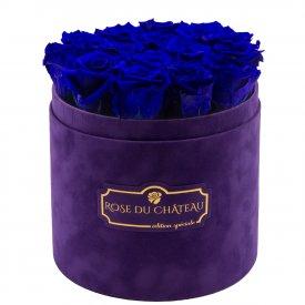 Eternity Blue Roses & Violet Flocked Flowerbox
