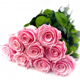 Bouquet of 9 Eternal Palepink Roses - 50 cm